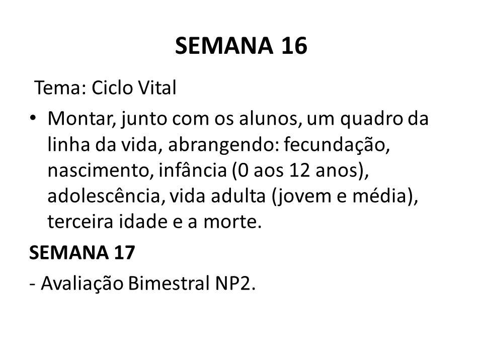 SEMANA 16 Tema: Ciclo Vital