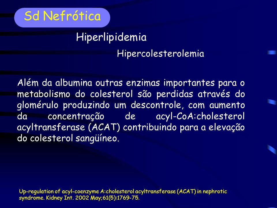 Sd Nefrótica Hiperlipidemia Hipercolesterolemia