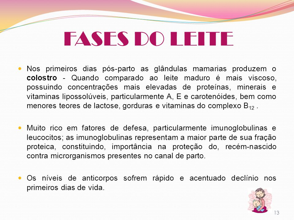 FASES DO LEITE
