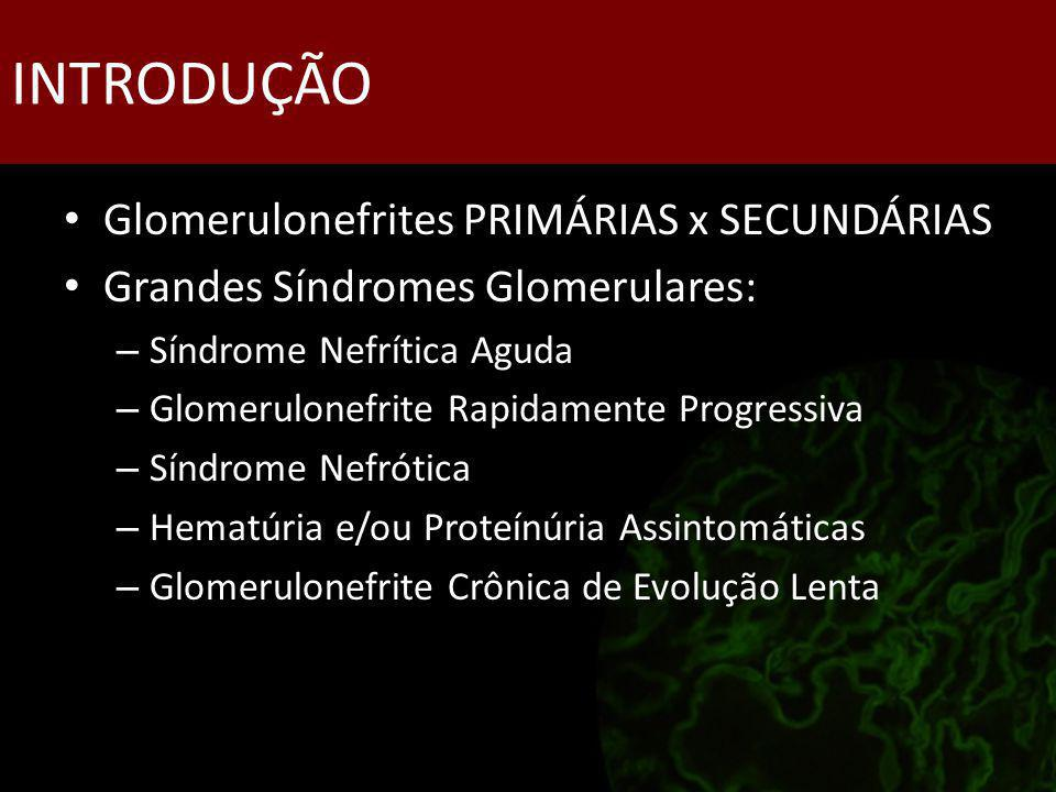 INTRODUÇÃO Glomerulonefrites PRIMÁRIAS x SECUNDÁRIAS