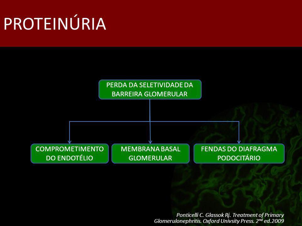 PROTEINÚRIA PERDA DA SELETIVIDADE DA BARREIRA GLOMERULAR