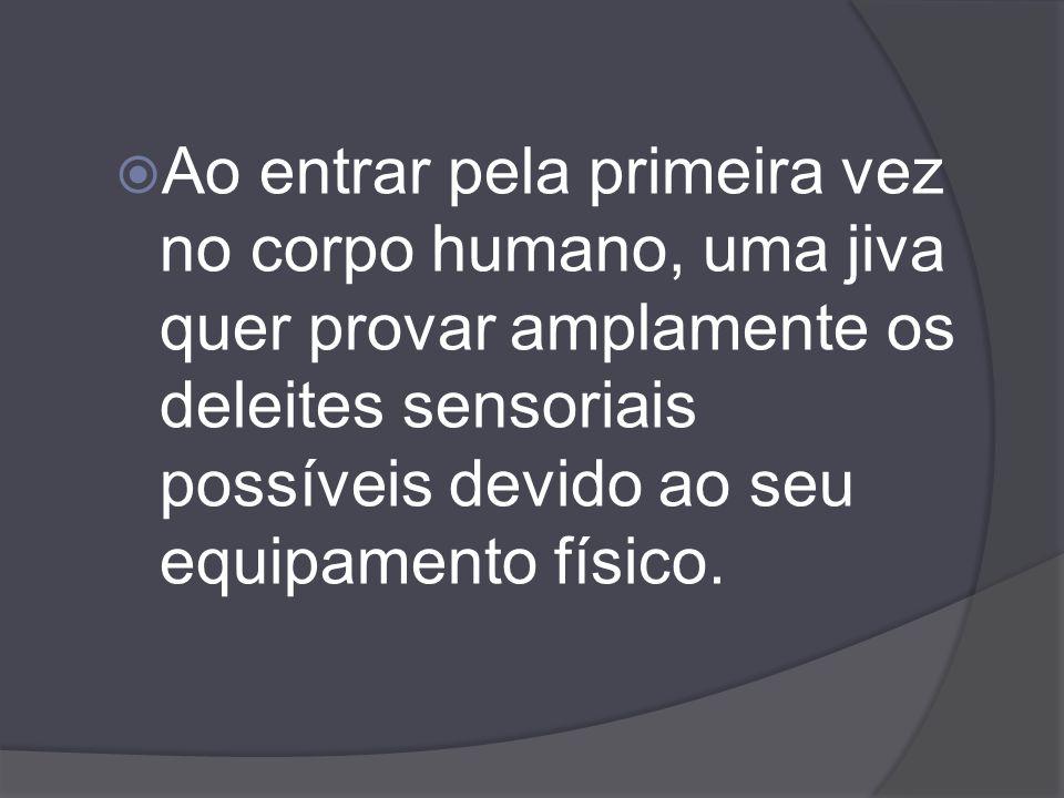 Ao entrar pela primeira vez no corpo humano, uma jiva quer provar amplamente os deleites sensoriais possíveis devido ao seu equipamento físico.