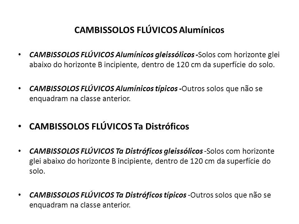 CAMBISSOLOS FLÚVICOS Alumínicos