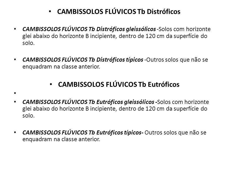 CAMBISSOLOS FLÚVICOS Tb Distróficos CAMBISSOLOS FLÚVICOS Tb Eutróficos