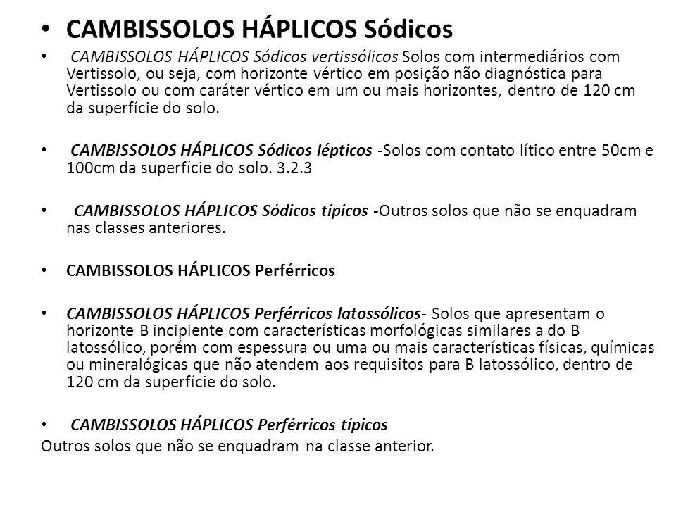 CAMBISSOLOS HÁPLICOS Sódicos