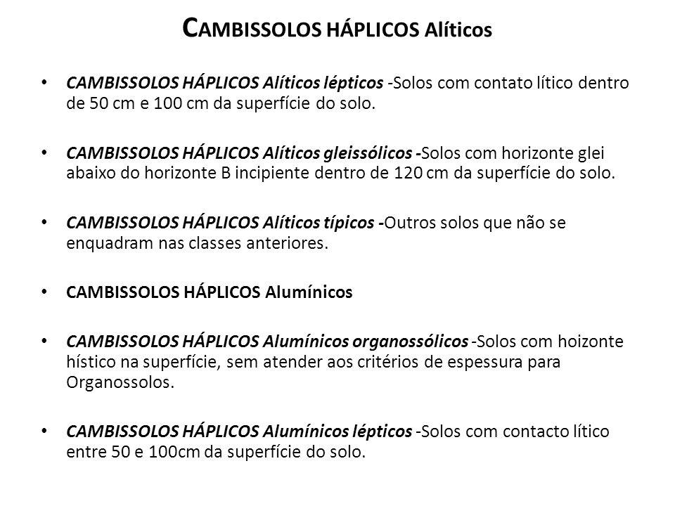 CAMBISSOLOS HÁPLICOS Alíticos