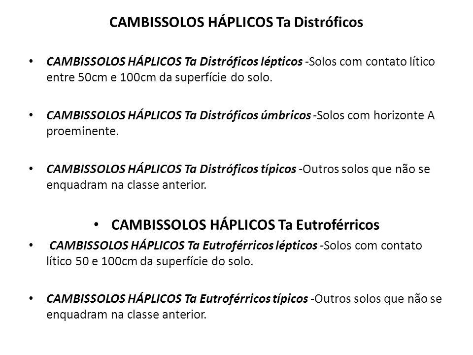 CAMBISSOLOS HÁPLICOS Ta Distróficos