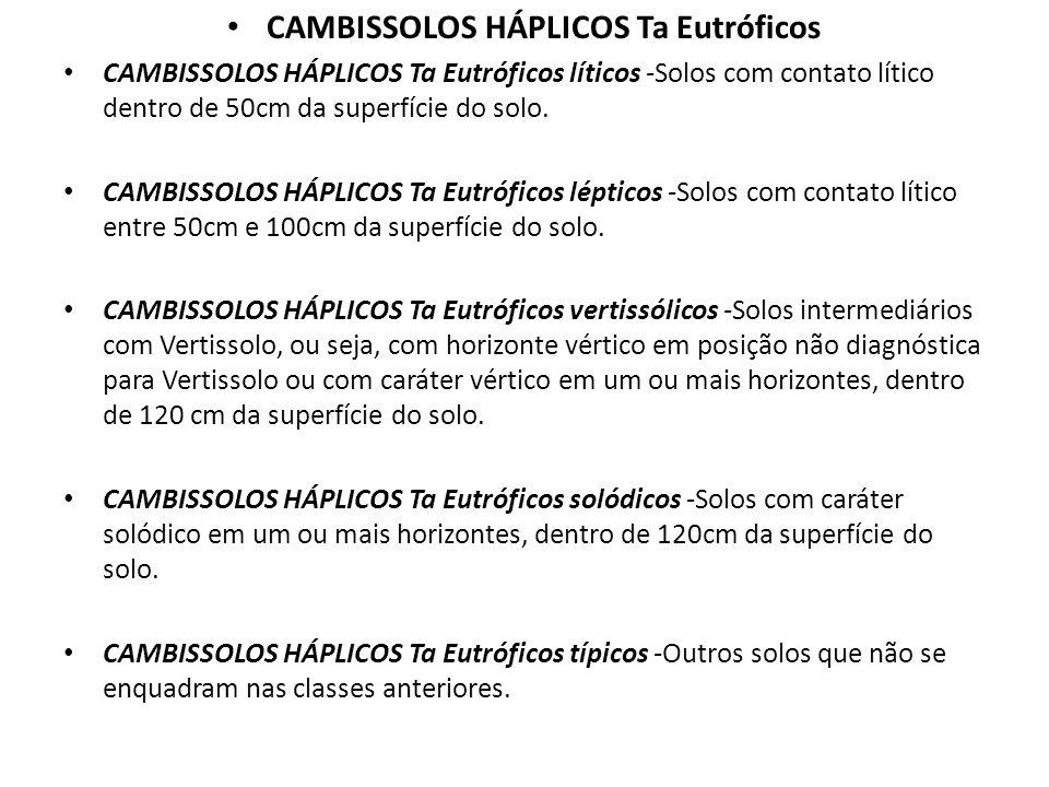 CAMBISSOLOS HÁPLICOS Ta Eutróficos