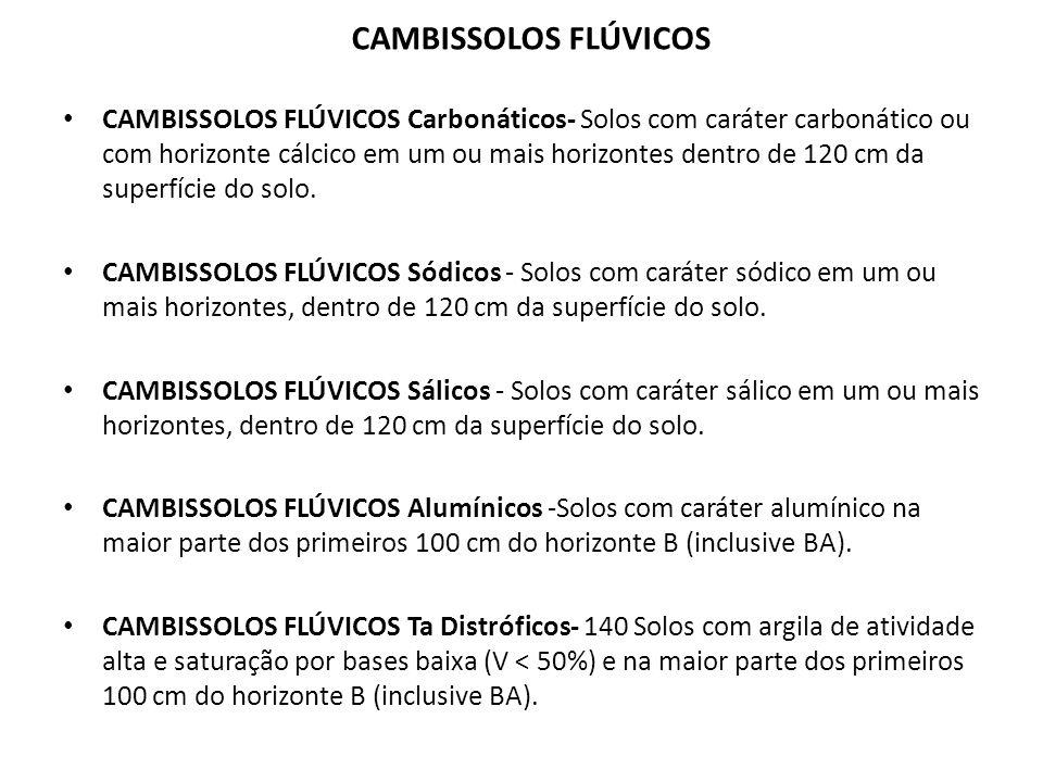 CAMBISSOLOS FLÚVICOS