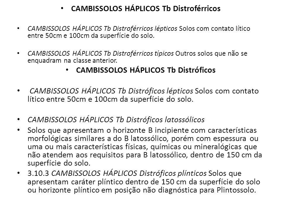 CAMBISSOLOS HÁPLICOS Tb Distroférricos