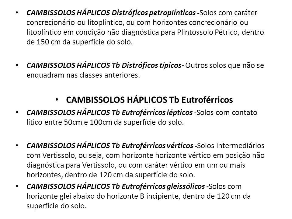 CAMBISSOLOS HÁPLICOS Tb Eutroférricos