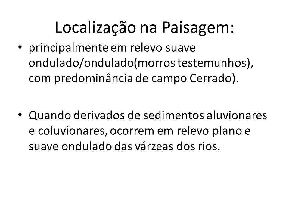 Localização na Paisagem: