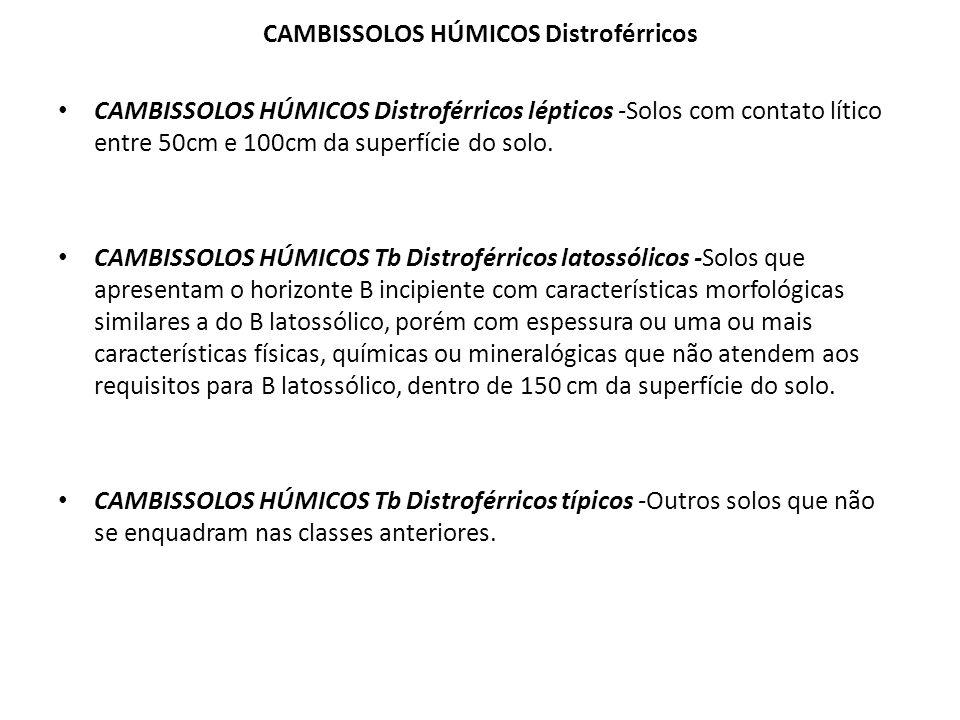CAMBISSOLOS HÚMICOS Distroférricos