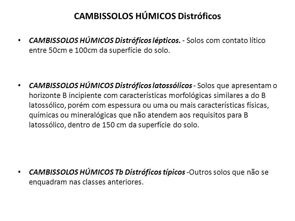 CAMBISSOLOS HÚMICOS Distróficos