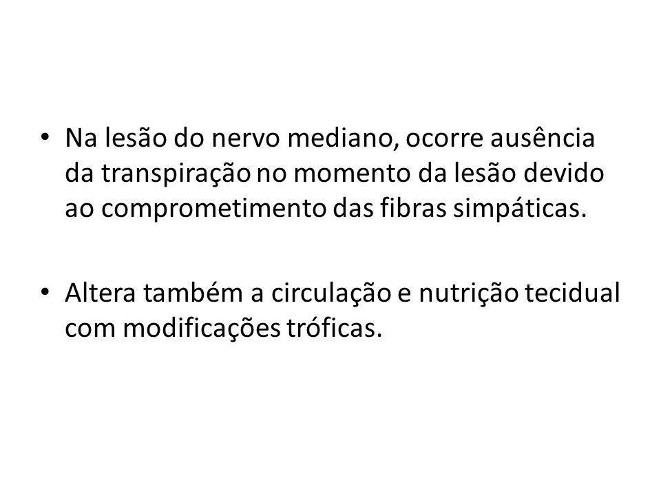 Na lesão do nervo mediano, ocorre ausência da transpiração no momento da lesão devido ao comprometimento das fibras simpáticas.