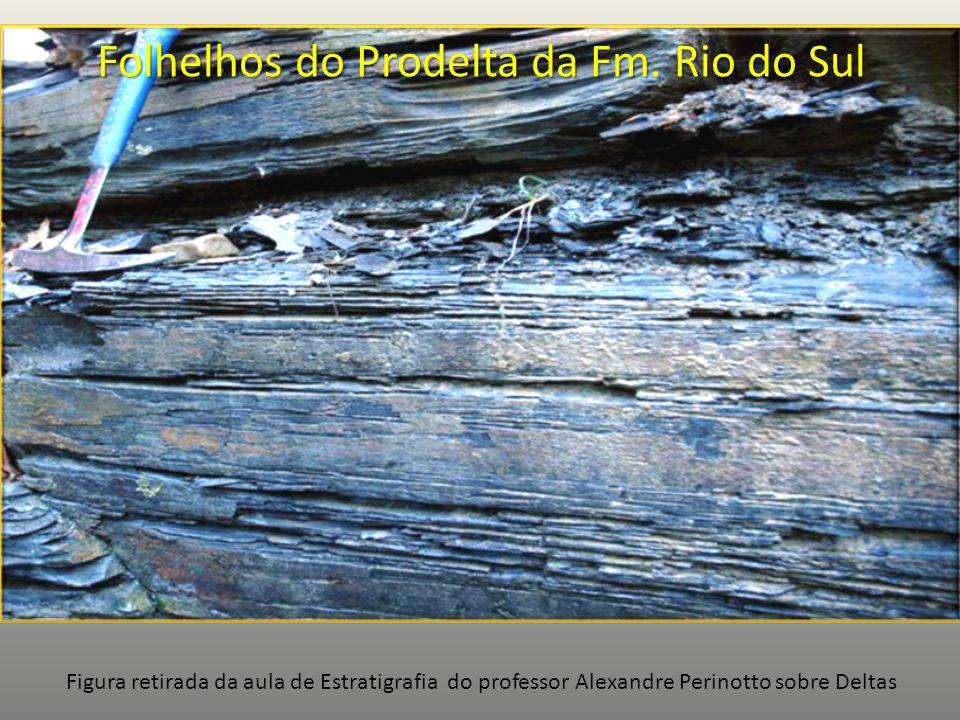 Folhelhos do Prodelta da Fm. Rio do Sul