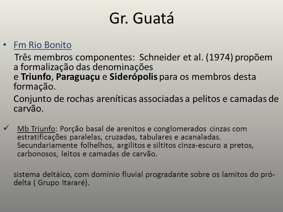 Gr. Guatá Fm Rio Bonito.