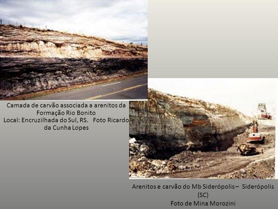 Arenitos e carvão do Mb Siderópolis – Siderópolis (SC)