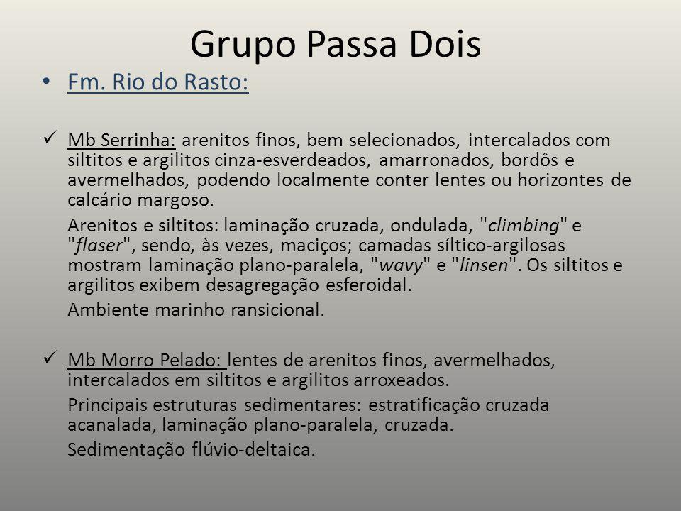 Grupo Passa Dois Fm. Rio do Rasto: