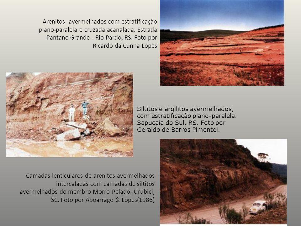 Arenitos avermelhados com estratificação plano-paralela e cruzada acanalada. Estrada Pantano Grande - Rio Pardo, RS. Foto por Ricardo da Cunha Lopes