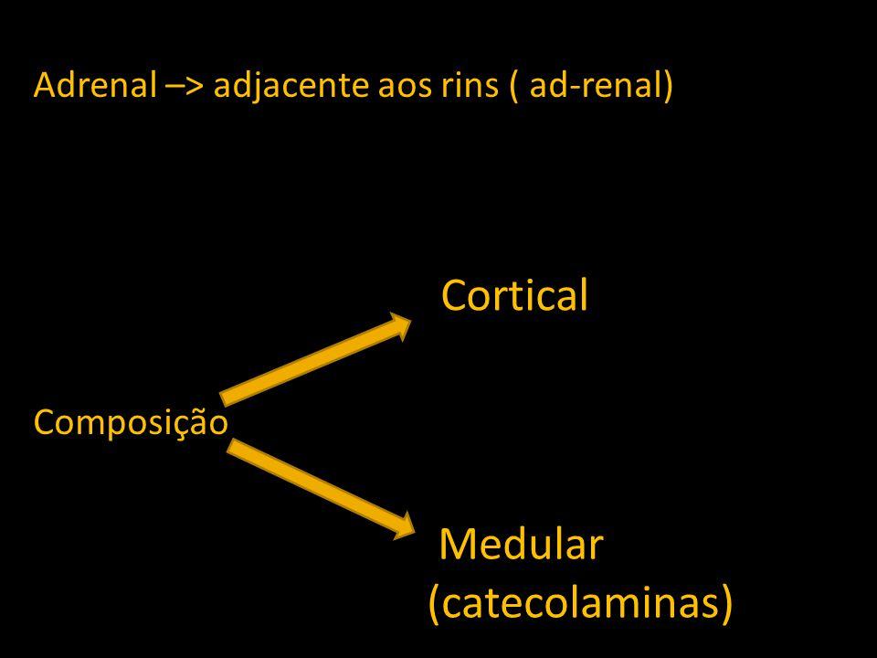 Adrenal –> adjacente aos rins ( ad-renal) Composição