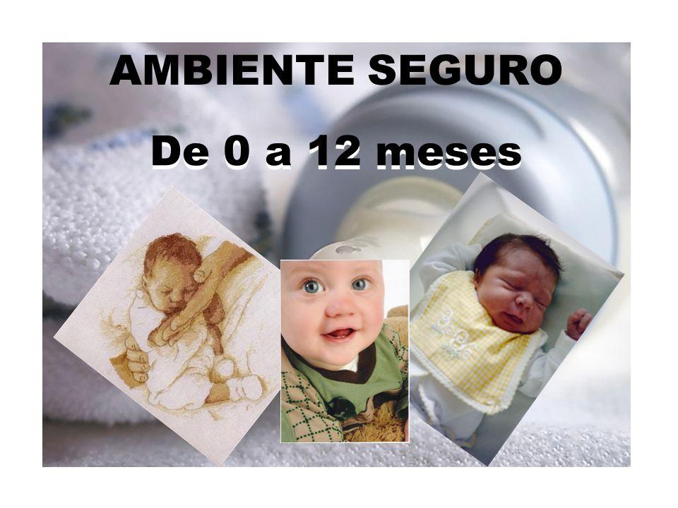 AMBIENTE SEGURO De 0 a 12 meses De 0 a 12 meses