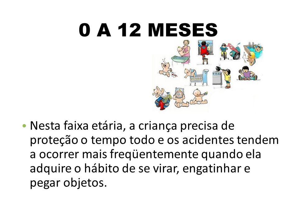0 A 12 MESES