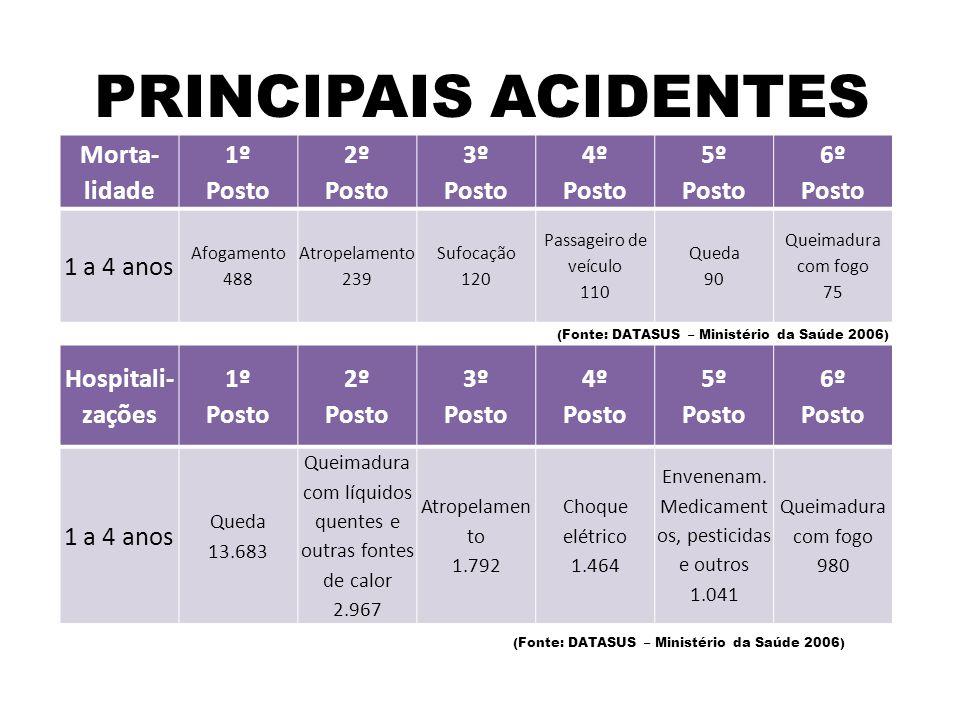 PRINCIPAIS ACIDENTES Morta- lidade 1º Posto 2º Posto 3º Posto 4º Posto