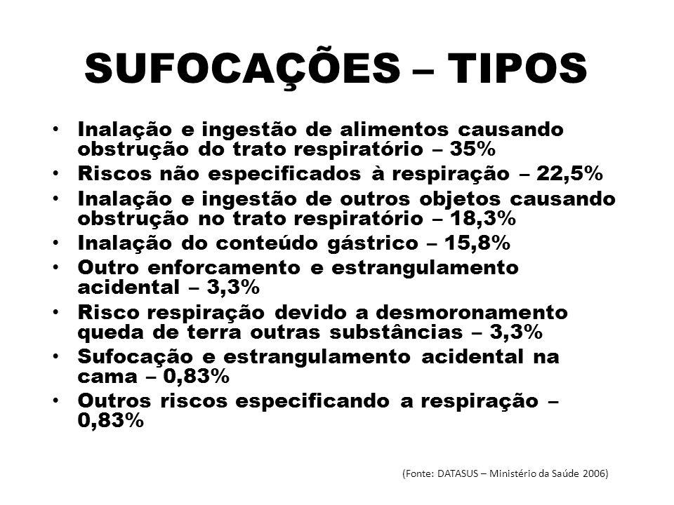 (Fonte: DATASUS – Ministério da Saúde 2006)