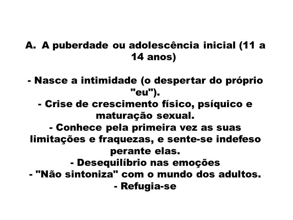 A puberdade ou adolescência inicial (11 a 14 anos)