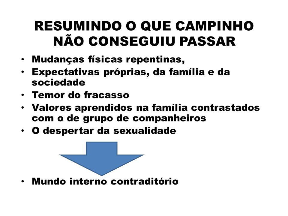 RESUMINDO O QUE CAMPINHO NÃO CONSEGUIU PASSAR