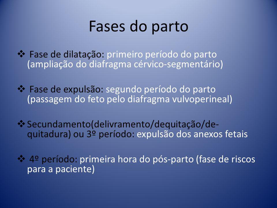 Fases do parto Fase de dilatação: primeiro período do parto (ampliação do diafragma cérvico-segmentário)