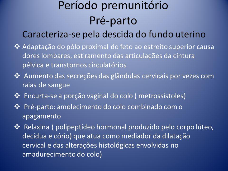 Período premunitório Pré-parto