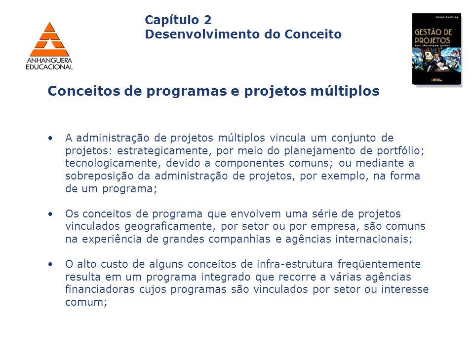 Conceitos de programas e projetos múltiplos