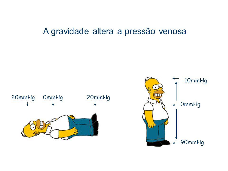 A gravidade altera a pressão venosa