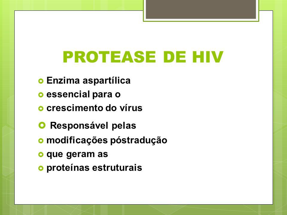 PROTEASE DE HIV Responsável pelas Enzima aspartílica essencial para o
