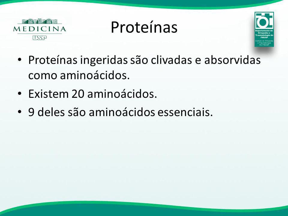 Proteínas Proteínas ingeridas são clivadas e absorvidas como aminoácidos.
