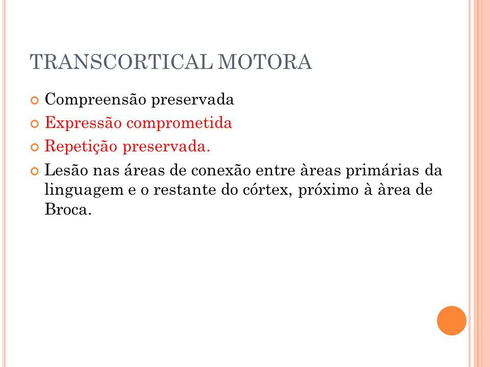 TRANSCORTICAL MOTORA Compreensão preservada Expressão comprometida