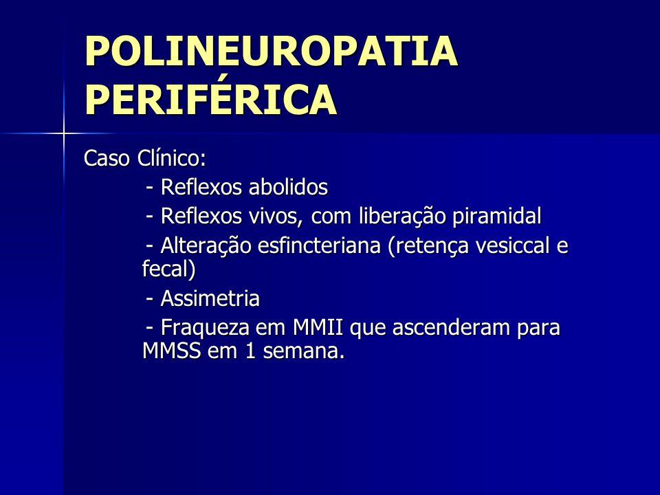 POLINEUROPATIA PERIFÉRICA