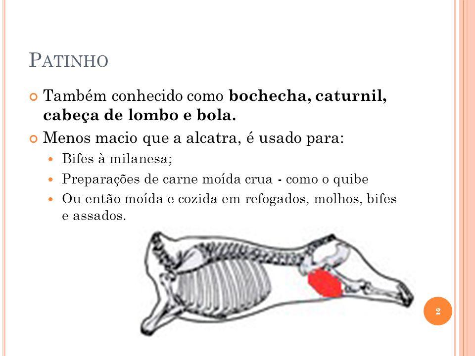 Patinho Também conhecido como bochecha, caturnil, cabeça de lombo e bola. Menos macio que a alcatra, é usado para: