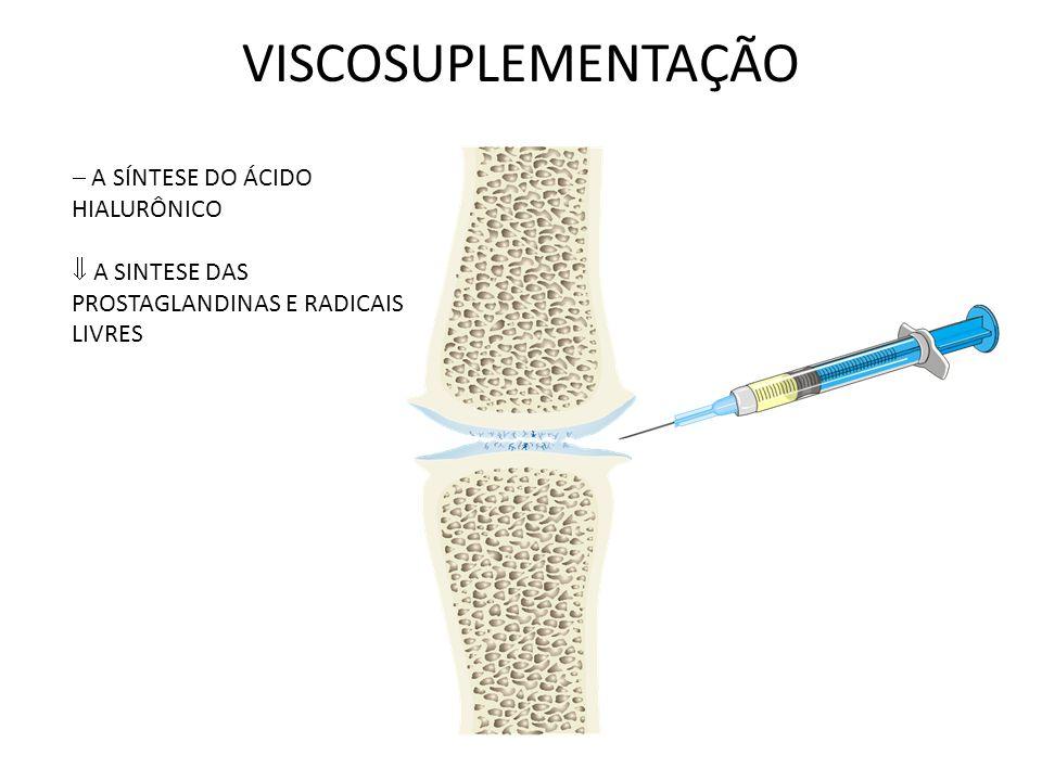 VISCOSUPLEMENTAÇÃO A SÍNTESE DO ÁCIDO HIALURÔNICO