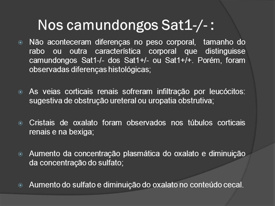 Nos camundongos Sat1-/- :