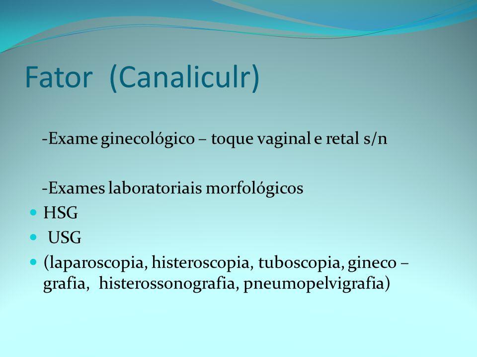 Fator (Canaliculr) -Exame ginecológico – toque vaginal e retal s/n