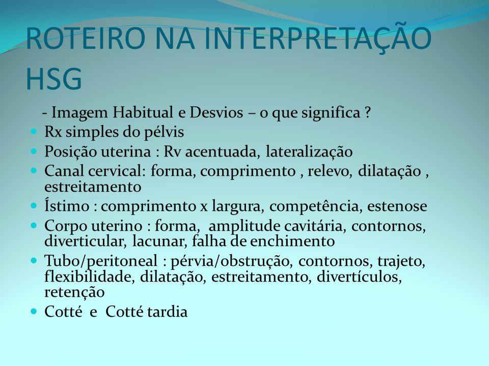 ROTEIRO NA INTERPRETAÇÃO HSG
