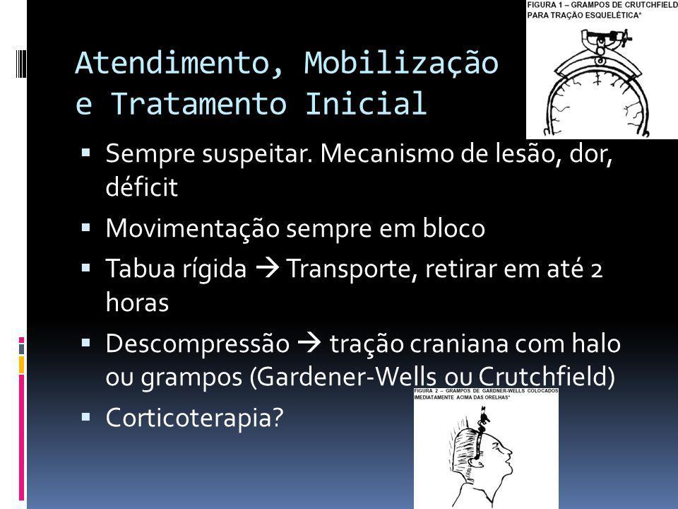 Atendimento, Mobilização e Tratamento Inicial