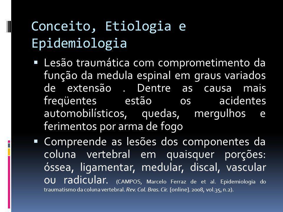 Conceito, Etiologia e Epidemiologia