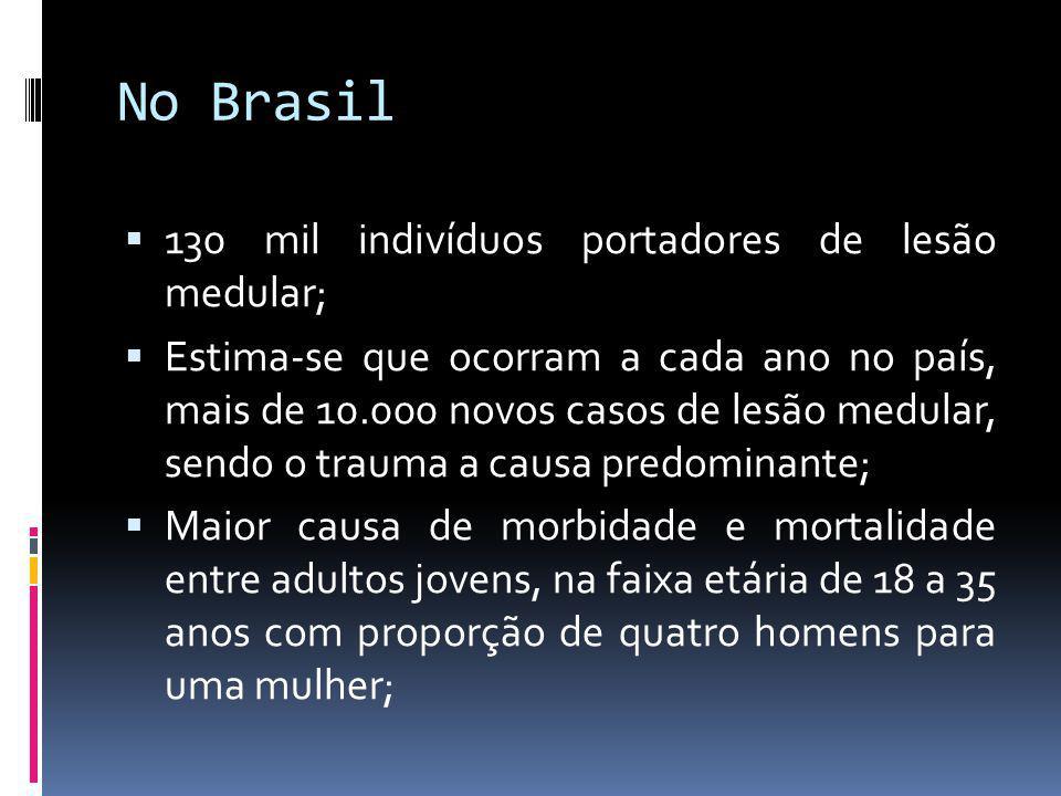 No Brasil 130 mil indivíduos portadores de lesão medular;