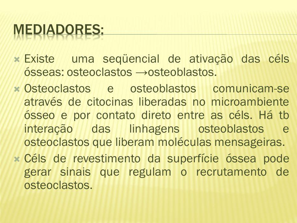 Mediadores: Existe uma seqüencial de ativação das céls ósseas: osteoclastos →osteoblastos.