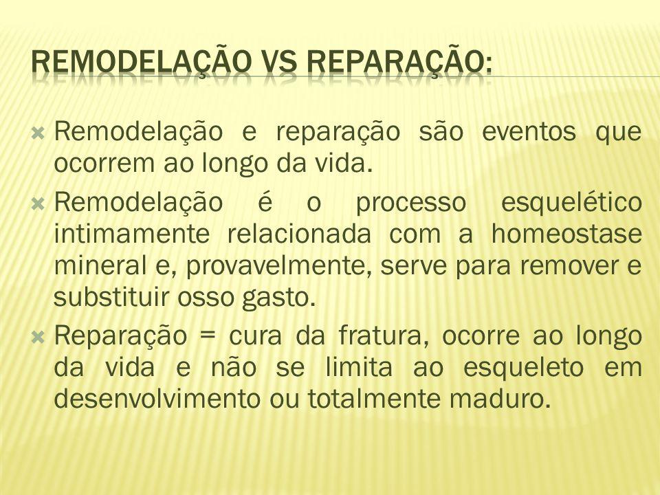 Remodelação vs reparação: