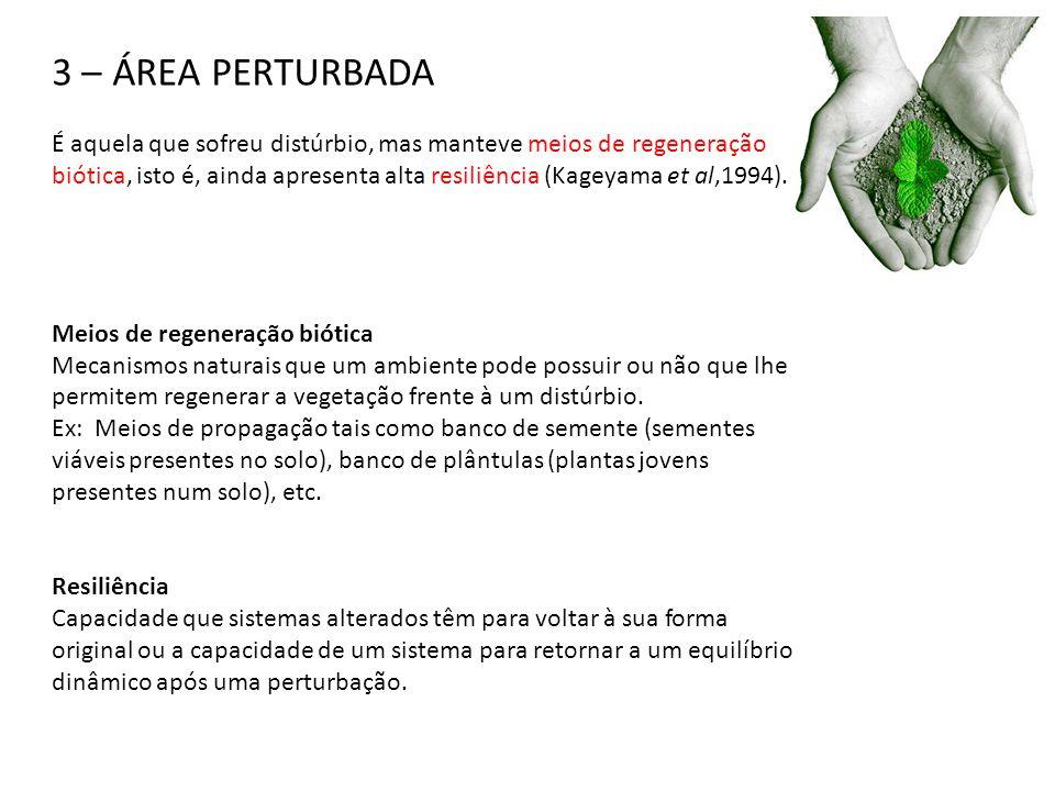 3 – ÁREA PERTURBADA